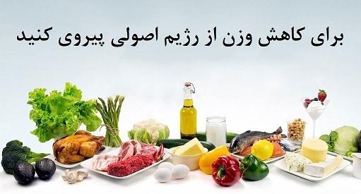 یکی از مهم ترین منبع های غذایی که می توانند به همراه دیگر مواد پروتئینی در رژیم های غذایی پروتئین مورد استفاده قرار گیرند