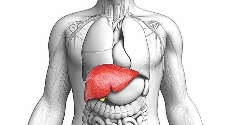 استفاده از برخی داروها تاثیر مستقیم بر روی وجود چند بیماری کبد چرب غیر الکلی میگذارد