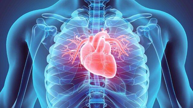 کاهش خطر بیماریهای قلبی عروقی
