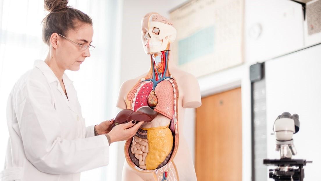 آیا می توان از بیماری کبد جلوگیری کرد؟