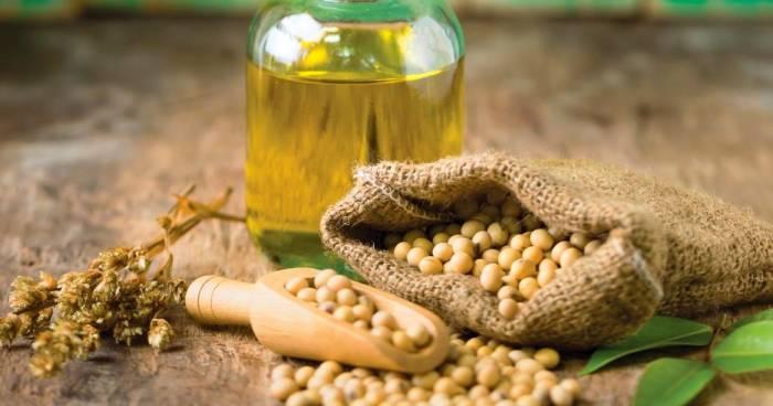 منابع گیاهی که سرشار از امگا3 هستند عبارت اند از: